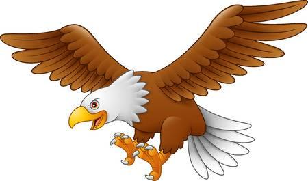 Descripción: Aguila Dibujo Vectores, Ilustraciones Y Gráficos - 123RF