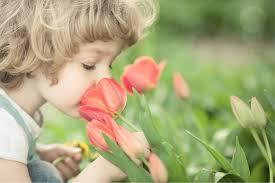 Descripción: La importancia del olfato en la generación de recuerdos en la infancia